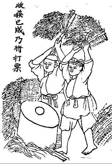 Sau 50 Năm Đọc Lại Quốc Văn Giáo Khoa Thư (GS Trần Văn Chi) - Page 3 Nongcu13