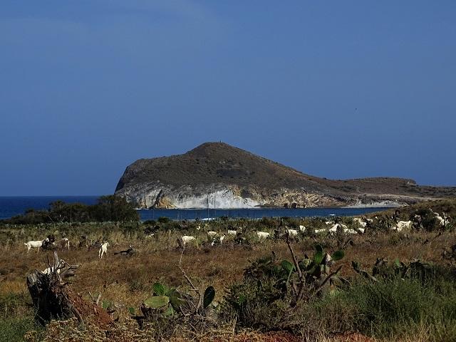 No Cabo de Gata  Dsc00415