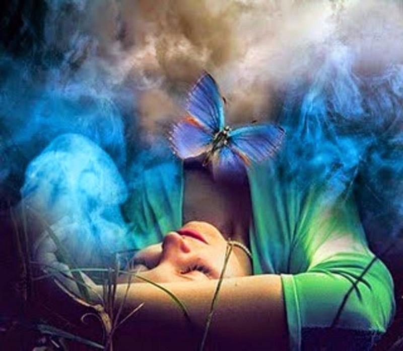 Como Mariposas Leccio10