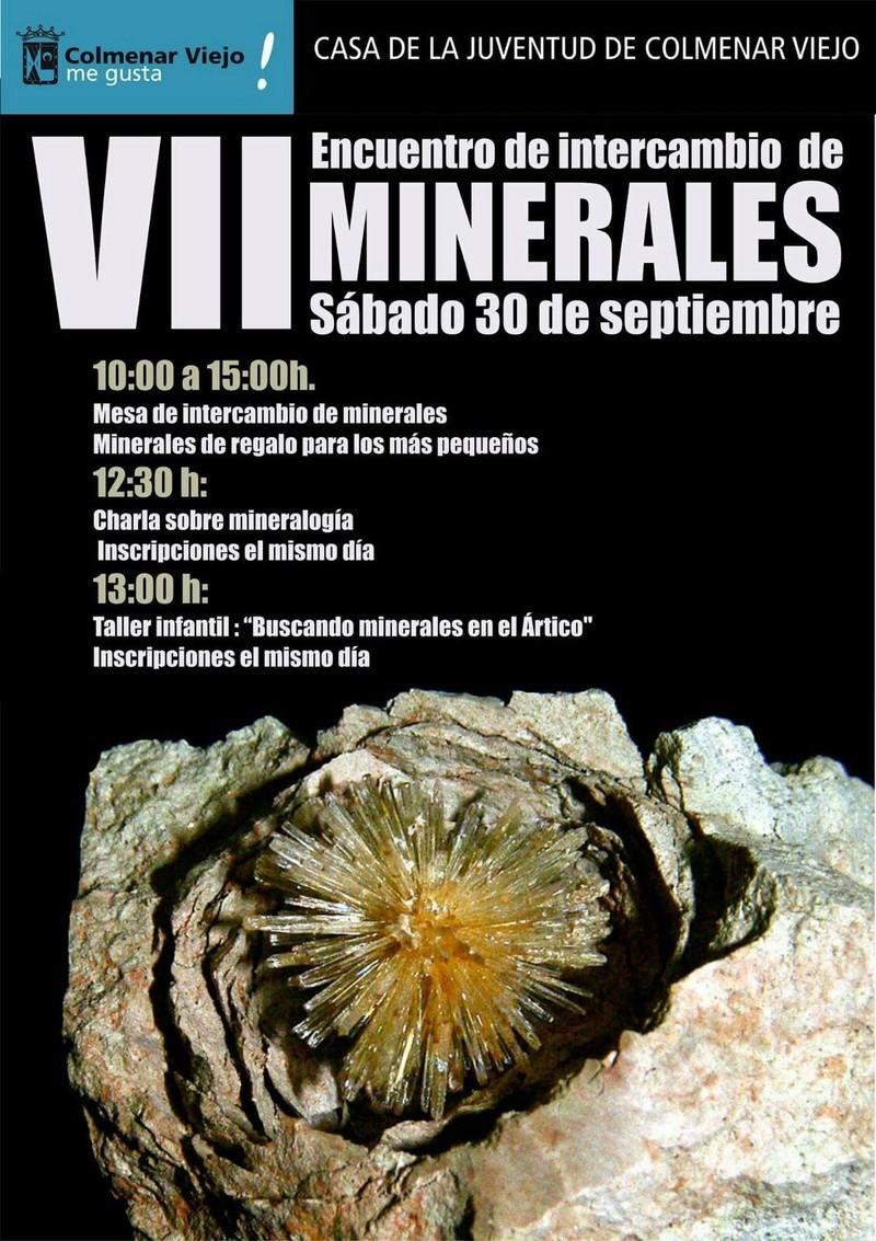 VII ENCUENTRO DE MINERALES, COLMENAR VIEJO Img-2011