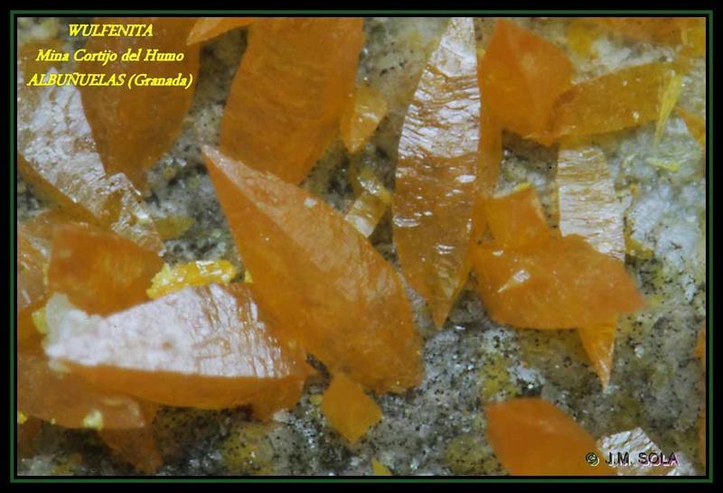 MINA EL CENTENILLO Y MINA DEL BCO. DEL HUMO (Albuñuelas - Granada) Wulfen14
