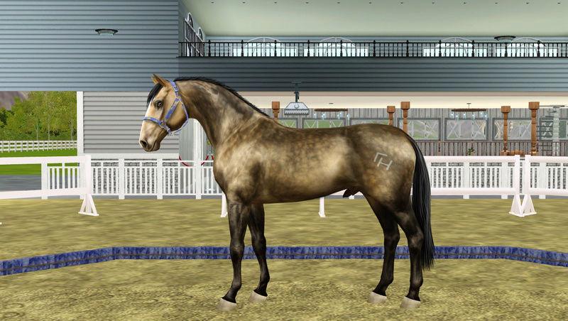 Регистрация лошадей в RHF 2 - Страница 7 Screen12