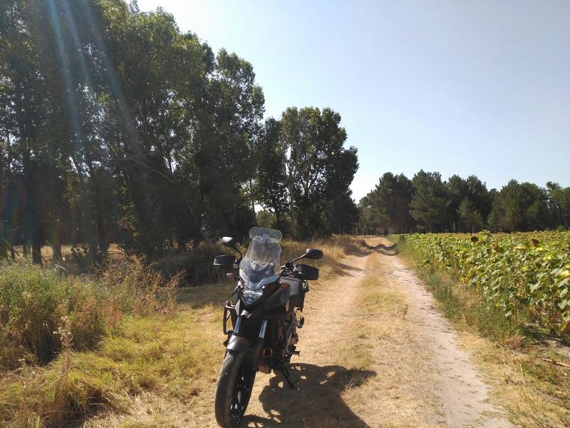 Unas fotos de la X rural. Toma de contacto con los caminos cercanos. Img_2047