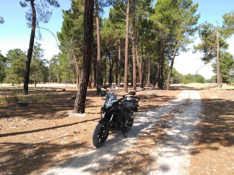 Unas fotos de la X rural. Toma de contacto con los caminos cercanos. Img_2048