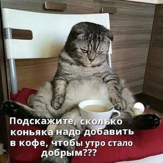 Свободное общение форумчан.  - Страница 38 Img-2011