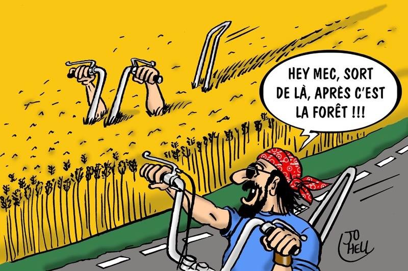 Humour en image du Forum Passion-Harley  ... - Page 2 Img_0160
