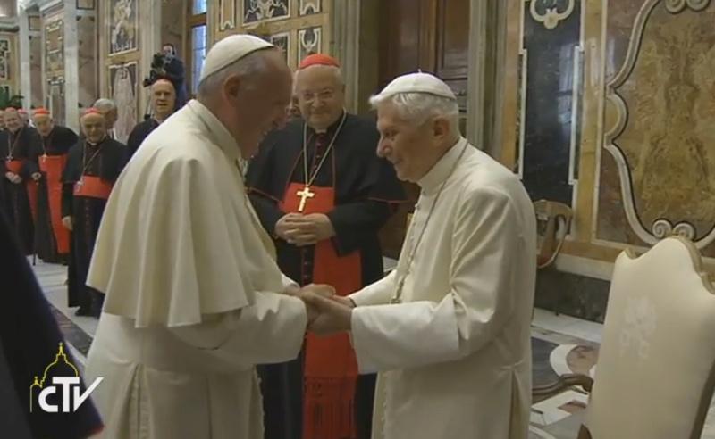 Joven de Ideas Hombre Gris Nueva Visión evangelio  Papa-f11