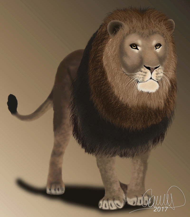 Nueva galería de Camii - Página 8 Lion_b10