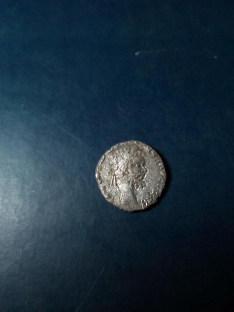 limpiar denario Img_2140