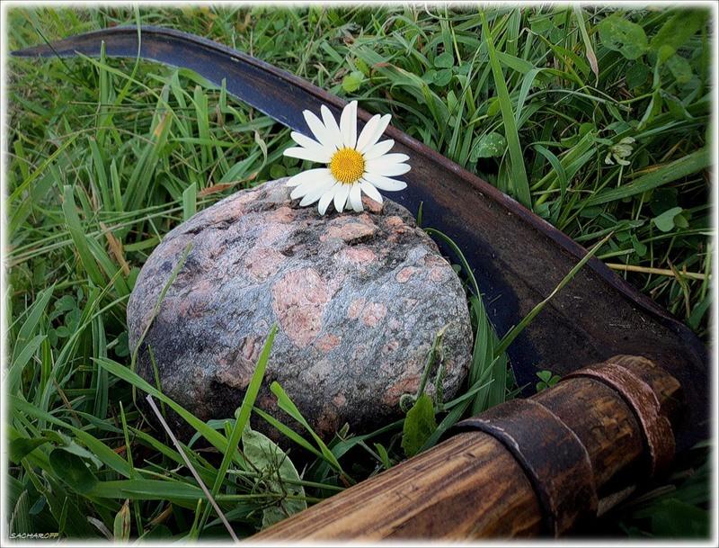 13.12.1253 г. Нашла коса на камень. 67354_10