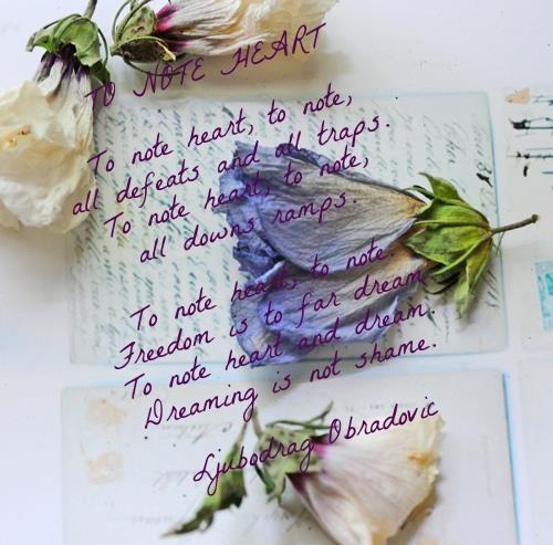 Moja Poezija - Ljuba Obradović 5b56fd10