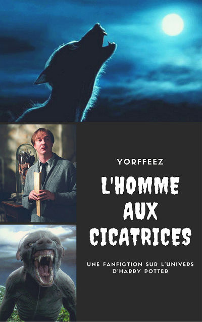 L'homme aux cicatrices [Fanfiction Harry Potter] Yorffe11