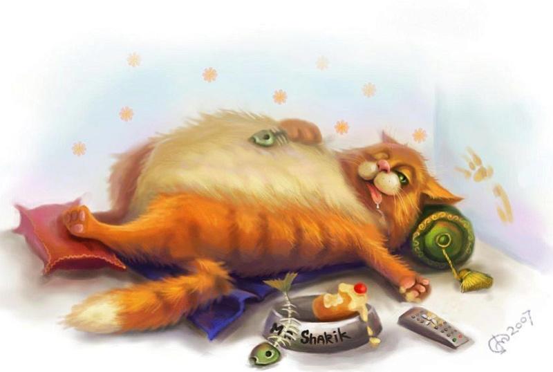 Всемирный День Кошек 13315510