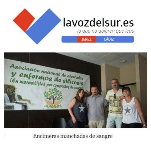 Entrevista a ANAES de La voz del sur La_voz11