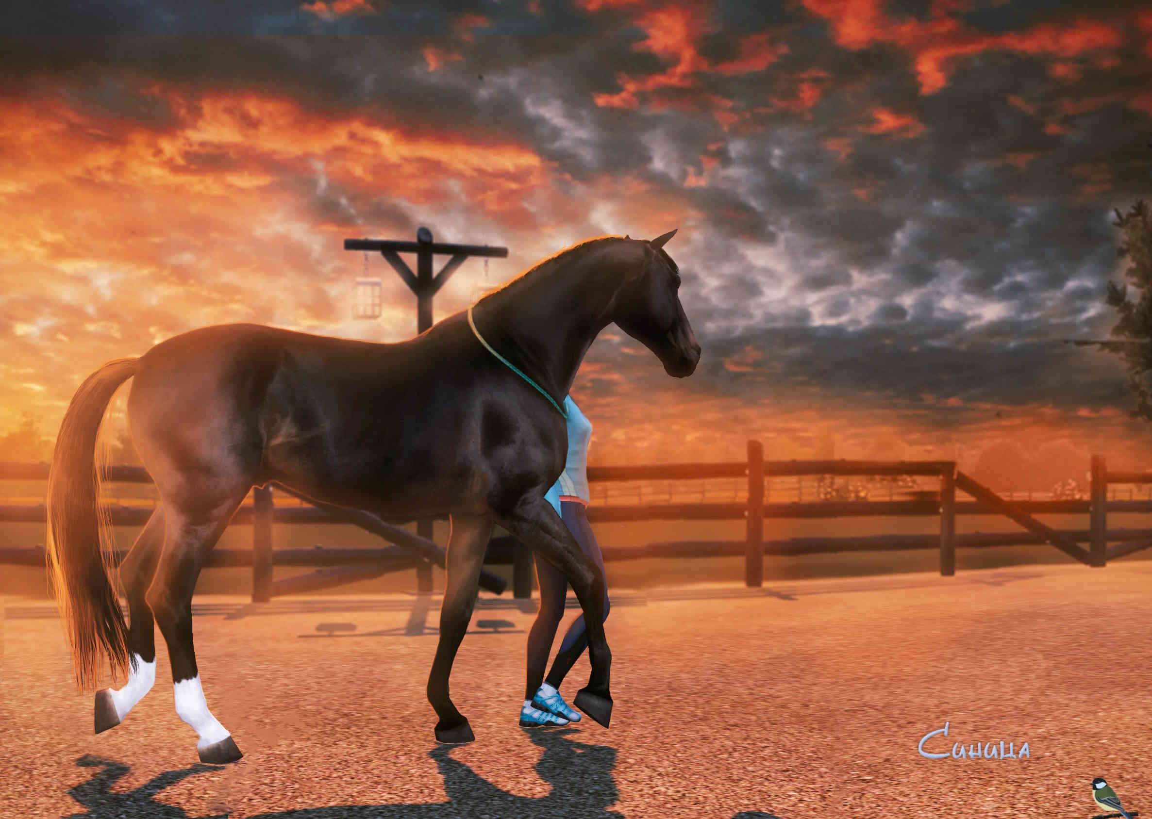 """Фотоальбом """"Best Rider"""" [Много фото; стр 28.] - Страница 27 Screen13"""