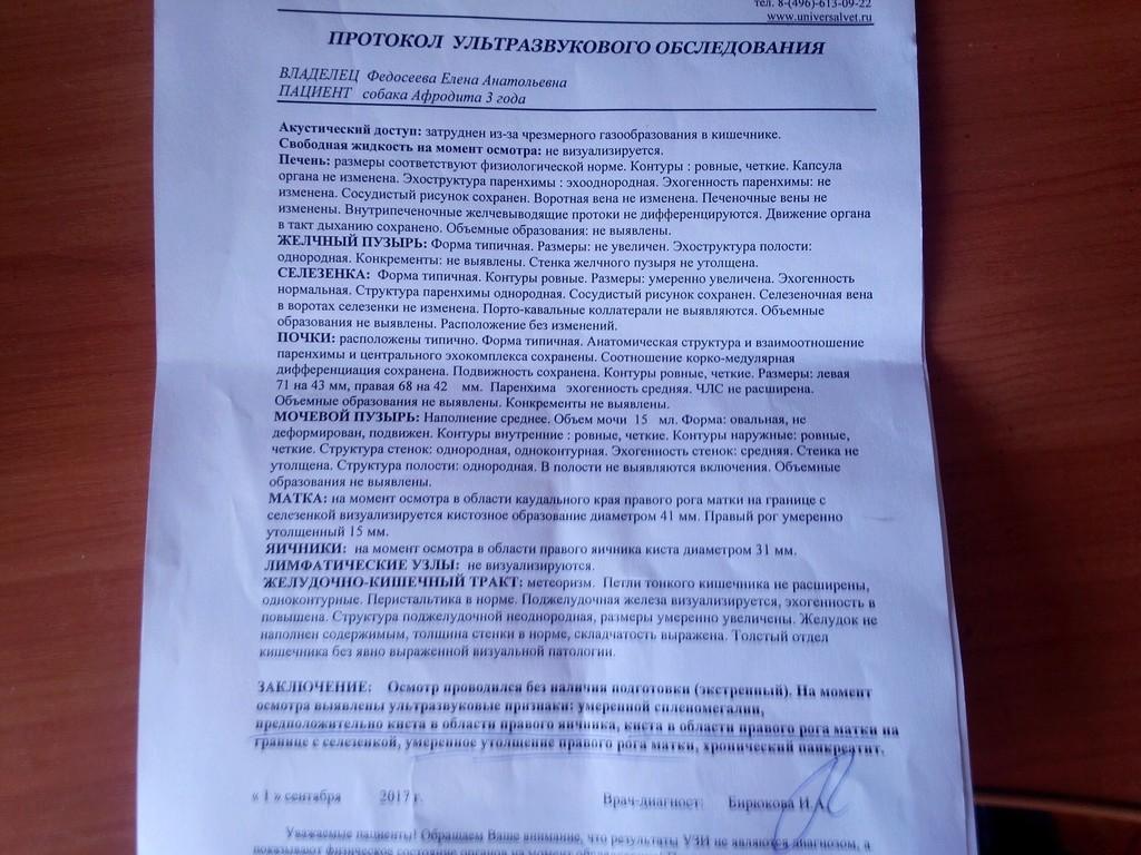 Москва, Афродита, сука 2,5 г - Страница 9 Img_2022