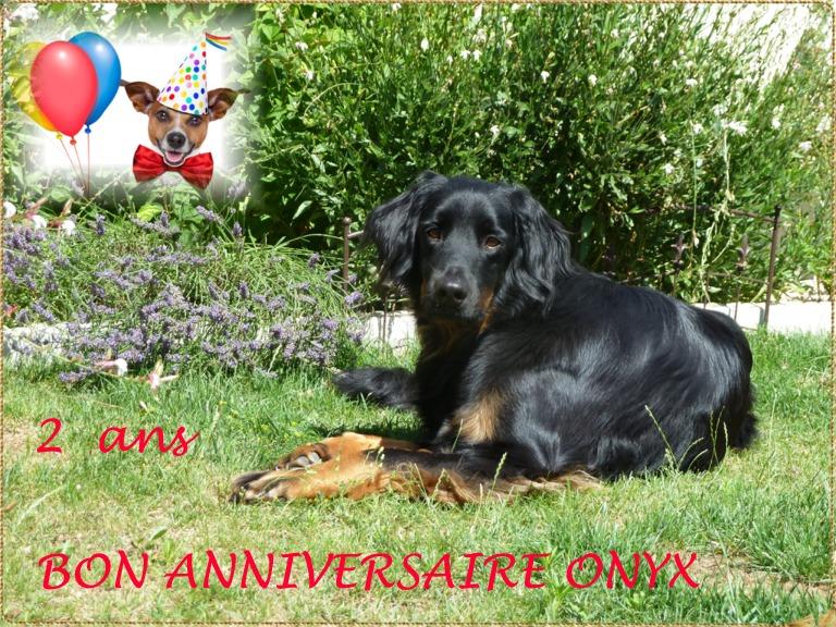 ONYX et son copain CESAR Onyx_210