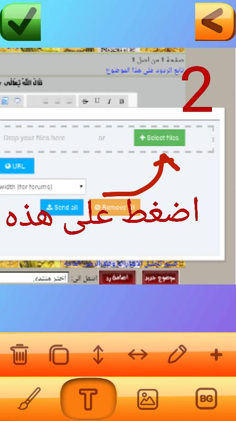 جنيه جورج الذهبي Screen31