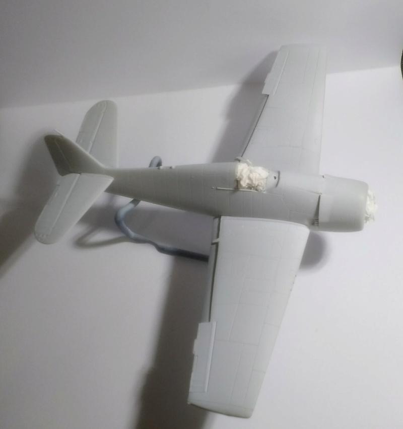 F6 F-5 Hellcat Picsar34