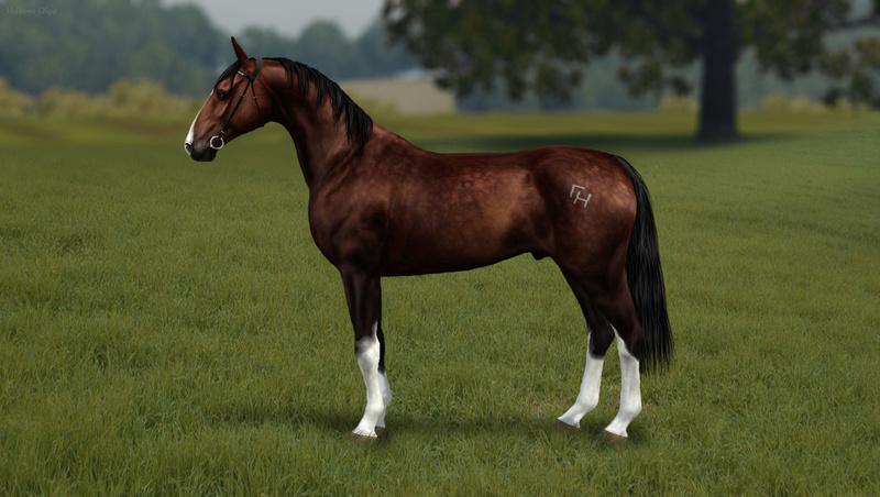 Регистрация лошадей в RHF 2 - Страница 7 Ez_aii12