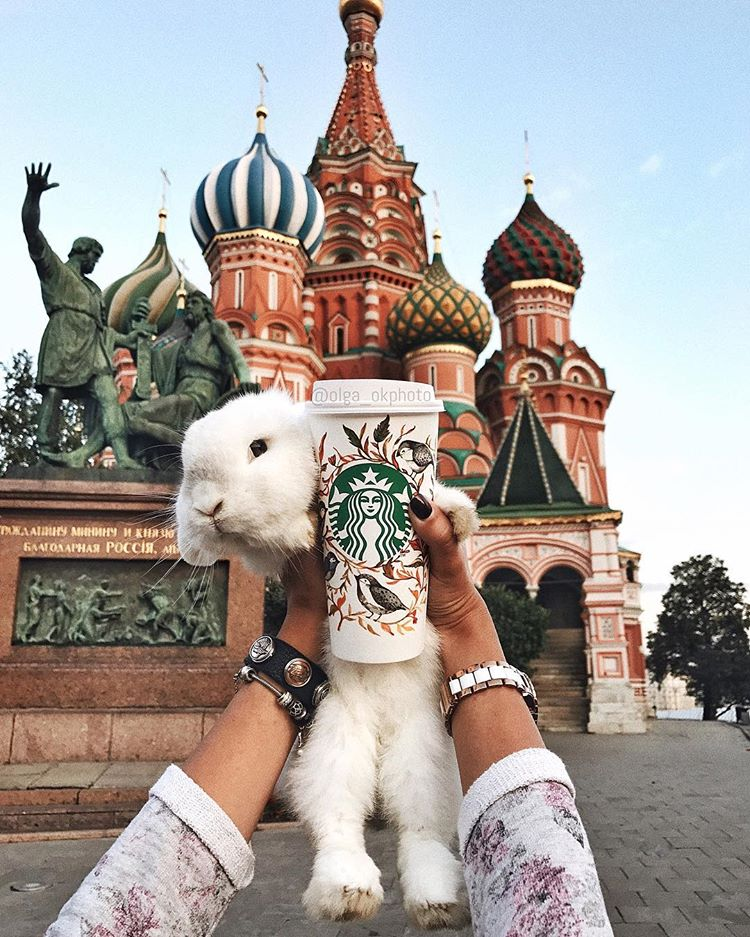 В нашей любимой Москве Bdt67y10