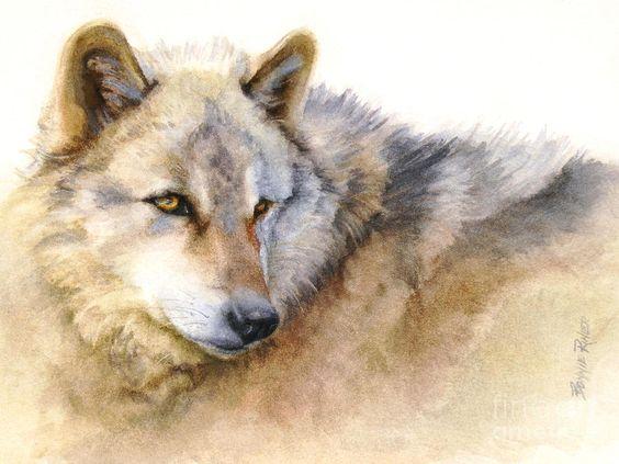 Les animaux peints à l'AQUARELLE - Page 10 A1c24310
