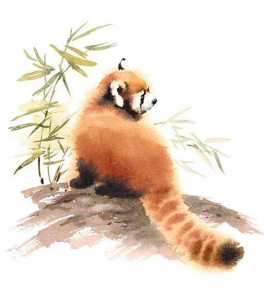 Les animaux peints à l'AQUARELLE - Page 10 D70aca10