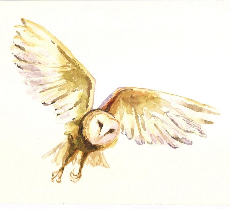 Les animaux peints à l'AQUARELLE - Page 10 Owl2bf10