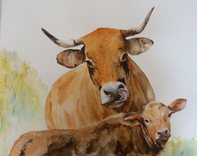 Les animaux peints à l'AQUARELLE - Page 9 Phoca_10