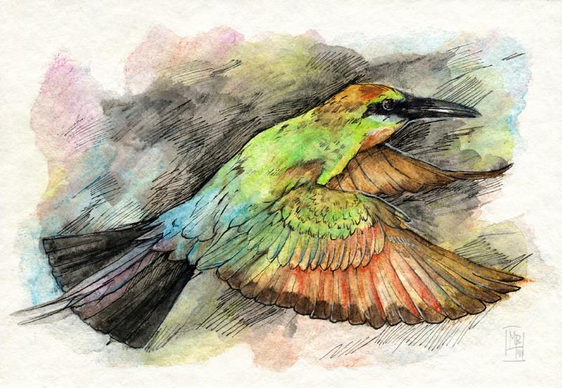 Les animaux peints à l'AQUARELLE - Page 10 Untitl11