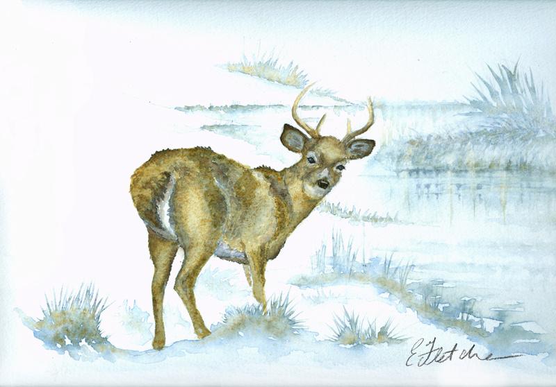 Les animaux peints à l'AQUARELLE - Page 9 Waterc10