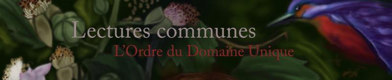 L'Ordre du Domaine Unique
