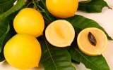 Ѽ❀❀❀Ѽ Экзотические фрукты – кладезь витаминов и минералов  2015-010