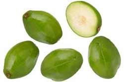 Ѽ❀❀❀Ѽ Экзотические фрукты – кладезь витаминов и минералов  2015-011