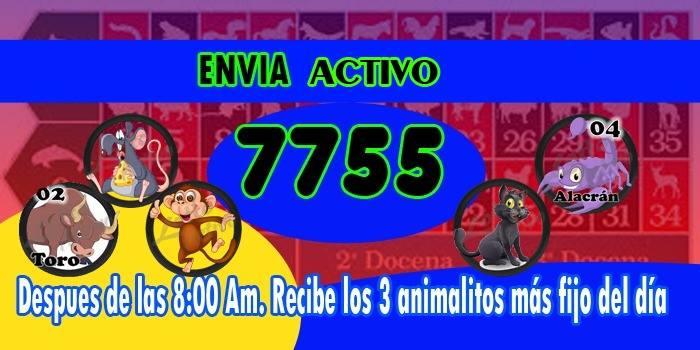 REGALO DEL LOTTO ACTIVO DE LA 7755 ARRASANDO AYER 3 ACIERTOS  22052910