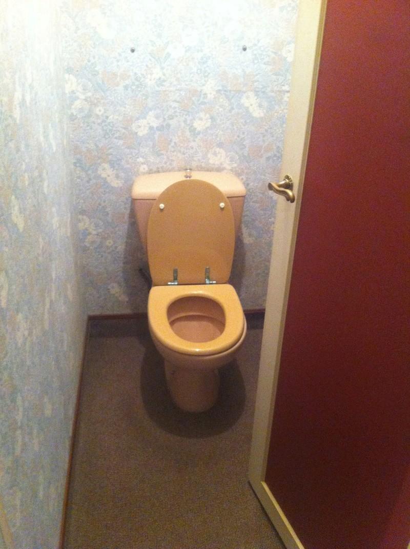 reno WC ----> pose WC suspendu Geberit 10810