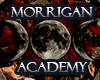 Morrigan Academy- Afiliación Elite 100x8010