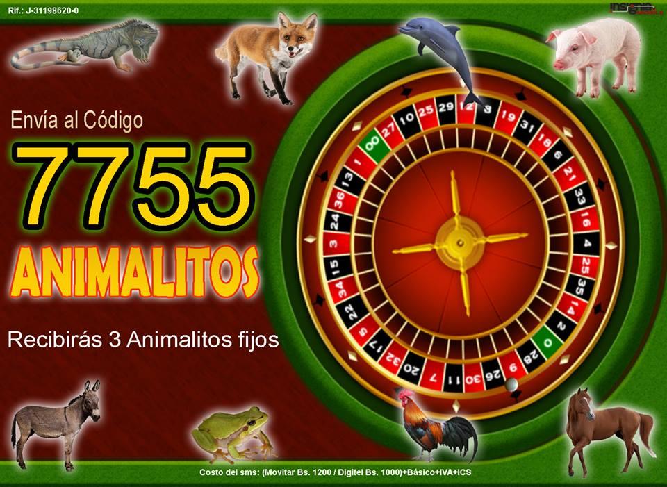 LLEGO LO MAS ESPERADO LA MENSAJERIA PARA LOS ANIMALITOS DE NELSON EL A Nelson10