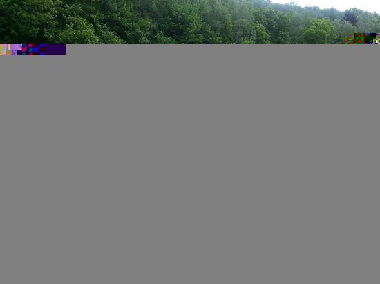 Balade sur la voie verte trans-Ardennes [8 juillet] saison 12 •Bƒ - Page 2 Fildel10