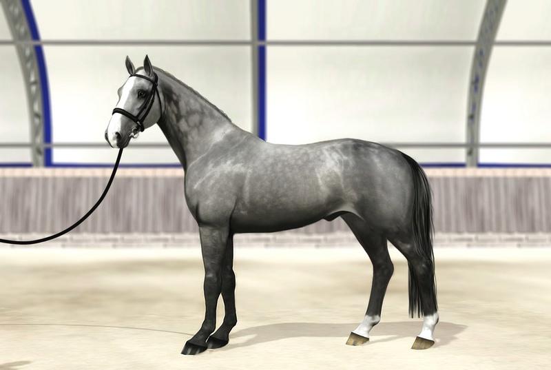 Регистрация лошадей в RHF 2 - Страница 7 Mugnpm10