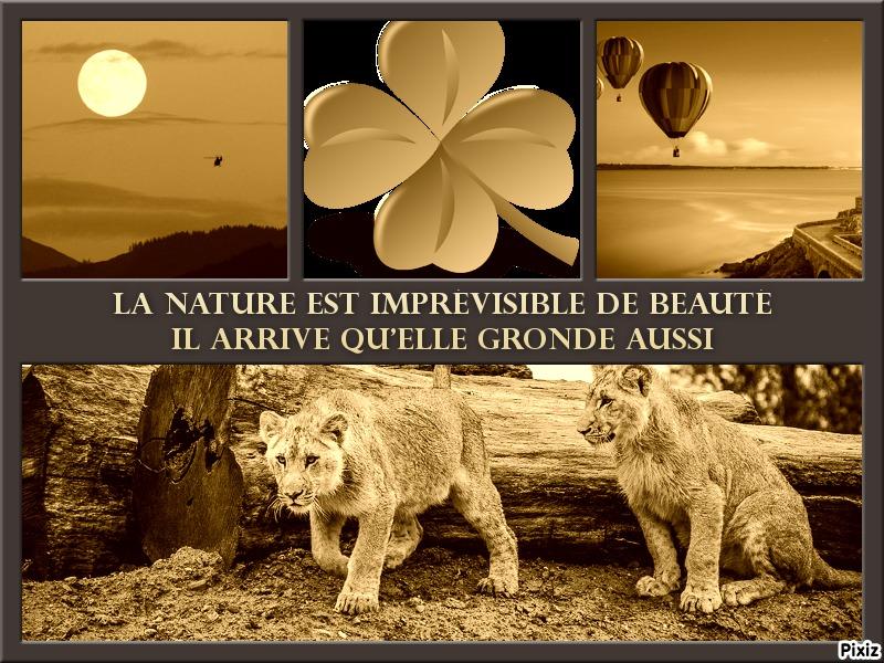 Belles Images au gré de votre imagination 4feb6410