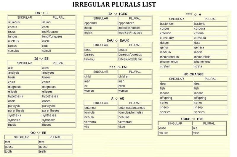 EL PLURAL-PLURALES IRREGULARES 51d27210