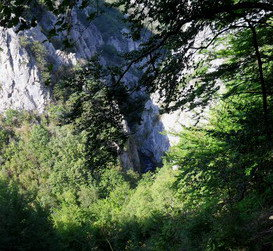 Planinari i alpinisti - Page 13 61791_10