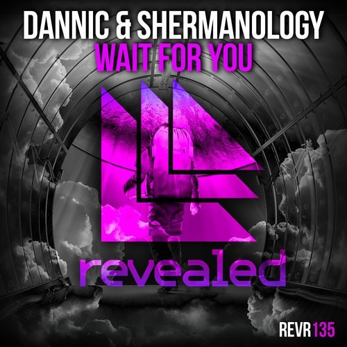 Dannic & Shermanology - Wait For You (Original Mix) 10356110