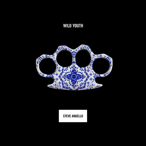 Steve Angello - Wild Youth (2016) 500x5019