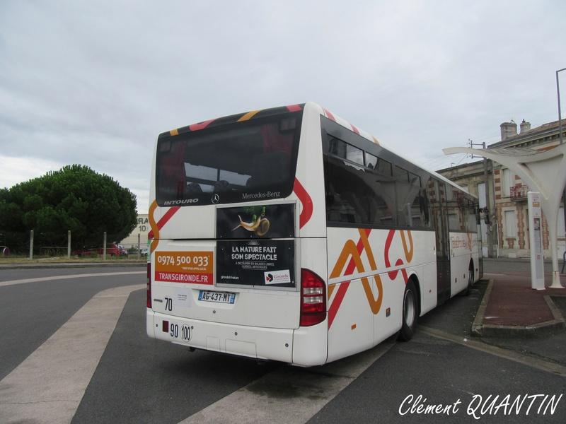 CITRAM AQUITAINE (Gironde) - Page 2 Img_9122