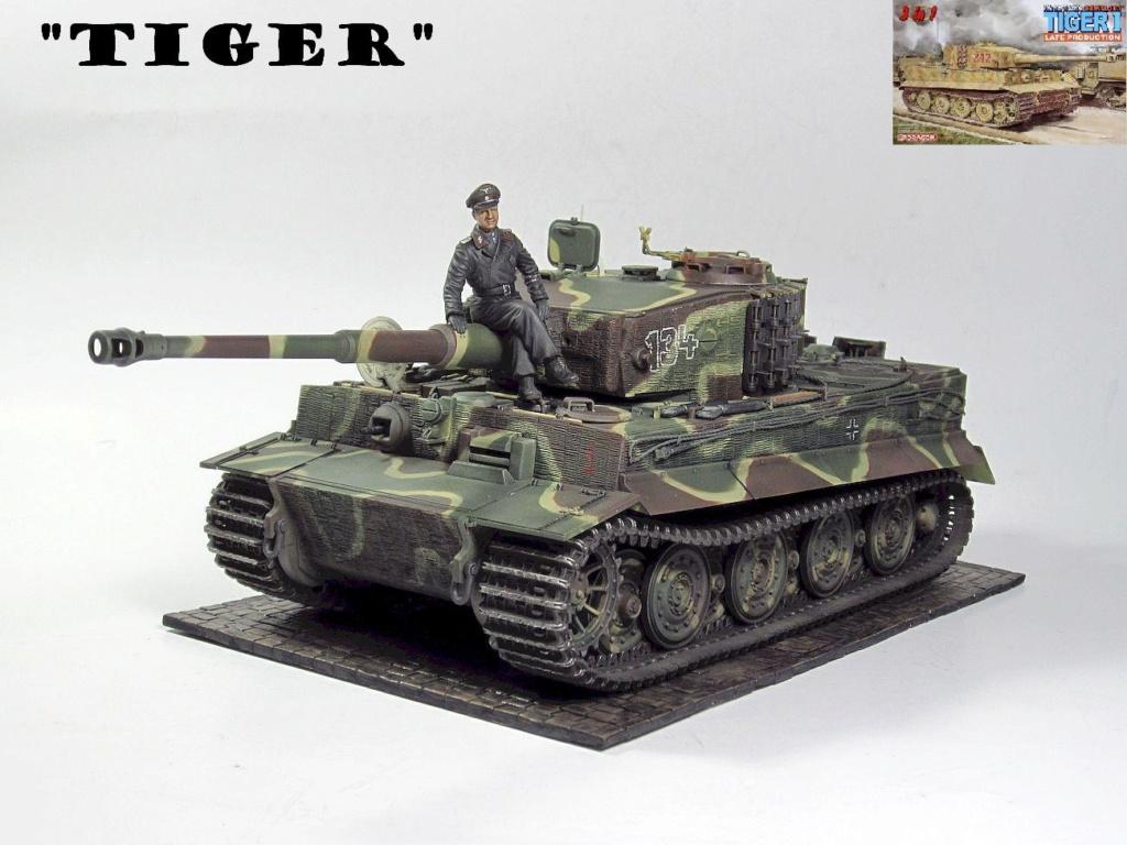 Tiger I Img_3033