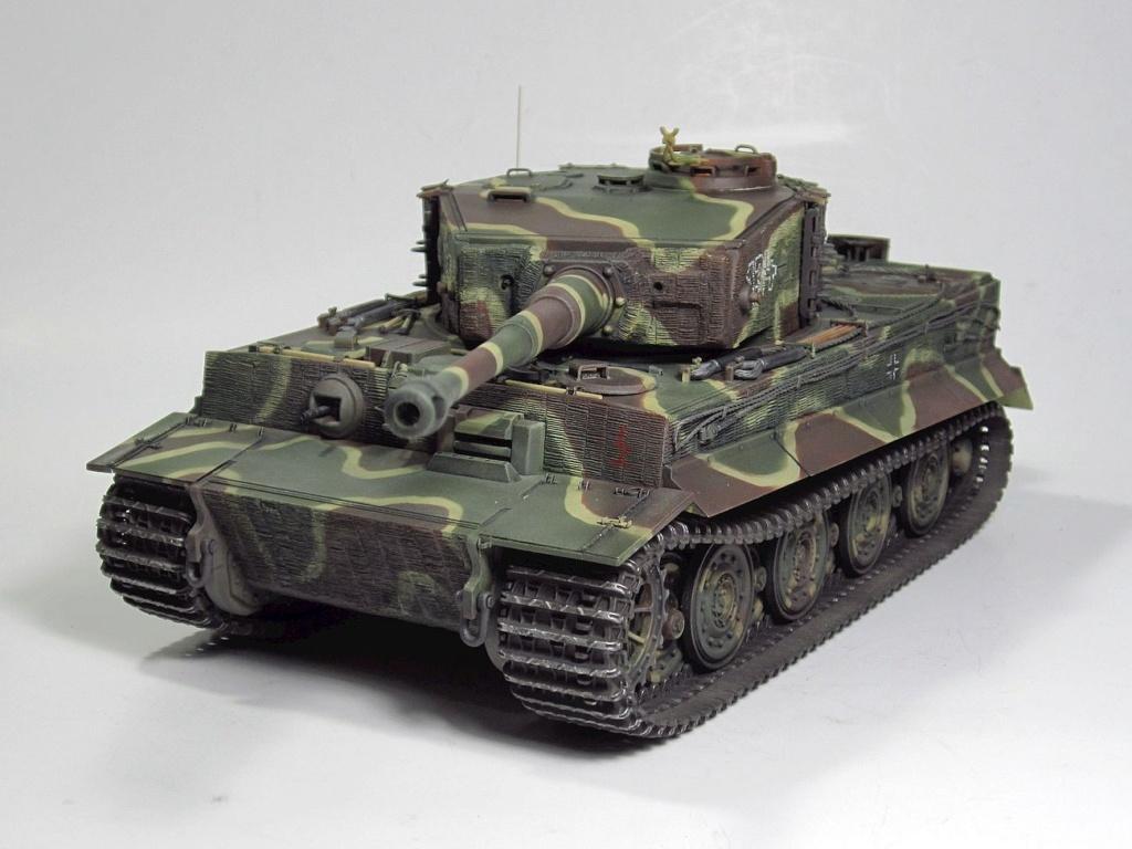 Tiger I Img_3034