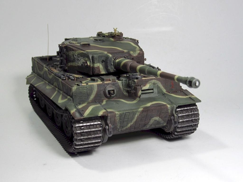 Tiger I Img_3039