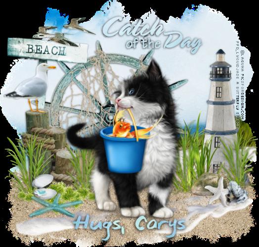 Top Cat Hugsca10
